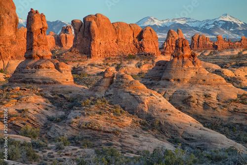Fotobehang Diepbruine Sunset on the Garden of Eden in Arches National Park, Moab, Utah