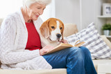 Side view portrait of smiling senior woman sitting on couch with her dog and reading book while enjoying weekend at home, copy space - 205974859