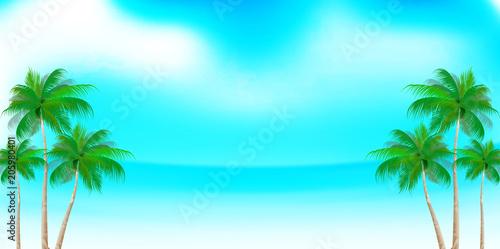 Plexiglas Lichtblauw 海 夏 ヤシの木 背景