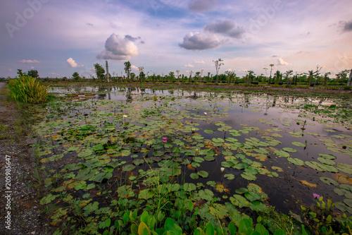 Aluminium Cappuccino watsuvarnabhumi The interior is beautifully located at 989 Moo 9 Soi Crocodile 8 Tambol Chaikhet Noi, Bangsaothong, Samutprakarn 10540 Thailand. (Suwannabhumi Buddhist Temple)