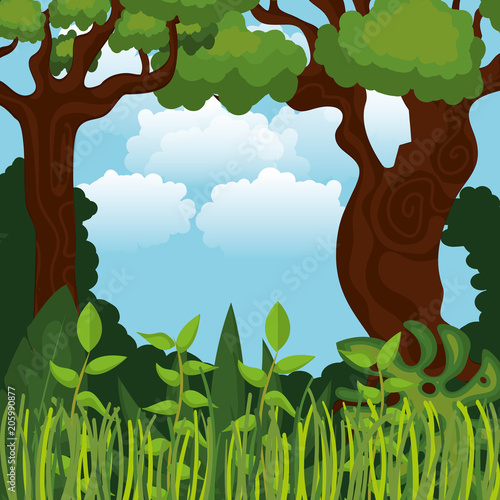rainforest jungle natural scene vector illustration design