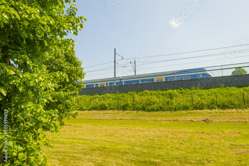 Train riding along a meadow in sunlight in spring