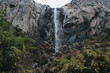 Bridalveil Fall, Yosemite National Park - 206002459