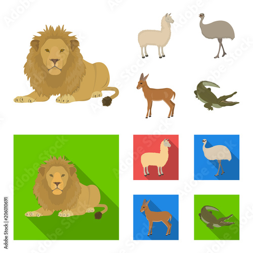 Fototapeta lama, ostrich emu, young antelope, animal crocodile. Wild animal, bird, reptile set collection icons in cartoon,flat style vector symbol stock illustration web.
