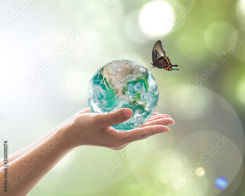 Foto Murales World environment day, sustainable ecology and environmental friendly concept with green earth planet on volunteer's woman hands. Element of  image furnished by NASA