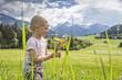 Mädchen pflückt Blumen auf der Frühlingswiese in den Alpen