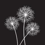 dandelion set of three