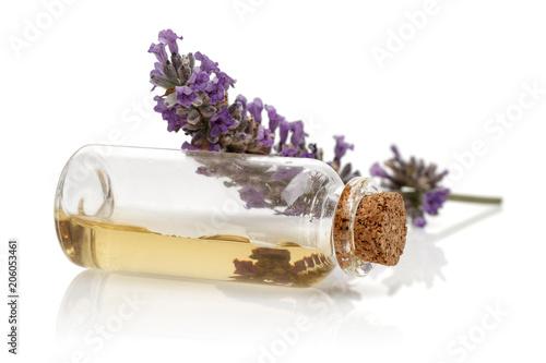 Fotobehang Lavendel Lavender