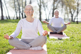 Mental health. Pleasant aged woman feeling peaceful while practicing yoga - 206082438