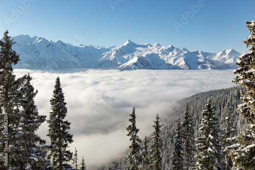Alpine valley filled with low cloud and snow covered fir trees in Zell Am See, Austria