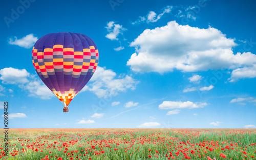 Plexiglas Klaprozen sunrise and poppies flowers field landscape