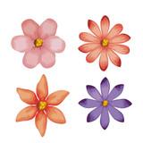 beautiful flowers set decorative icon vector illustration design - 206094021