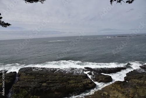 Foto Murales Oregon Coast