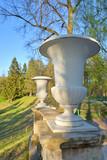Decorative vase in Pavlovsk Park. - 206123617