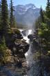 Athabasca Falls - 206126819
