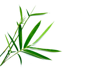 Close -up bamboo leaves on white background © หอมกลิ่น กล้วยไม้