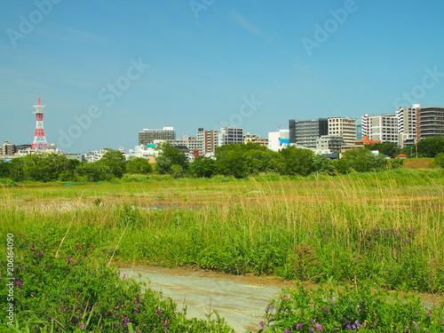 Fotobehang Blauw 松戸市街を臨む江戸川河川敷風景