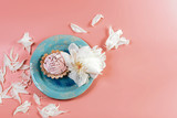 Picturesque still life in pink tones, decorative plate with creamy cake surrounded by white petals pions, on a pink background, copy space, top view, set - 206165420