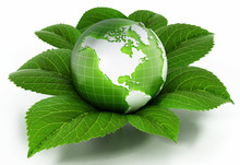 Green Globe Protected By Fresh Leaves 3d Illustration Sticker