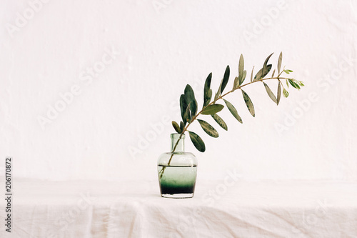 Olive  brunch in green stylish vase at  linen tablecloth Minimalistic decorated background © victoria