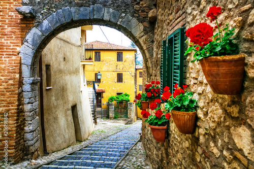 Aluminium Freesurf Beautiful charming old streets with floral decoration in italian villages. Casperia