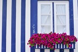 Window in an old house decorated with flower.