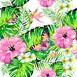Hawaiian flowers, butterflies, watercolor, exotic plants, isolated on a white - 206209473