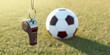 Leinwanddruck Bild - Trillerpfeife und Fußball