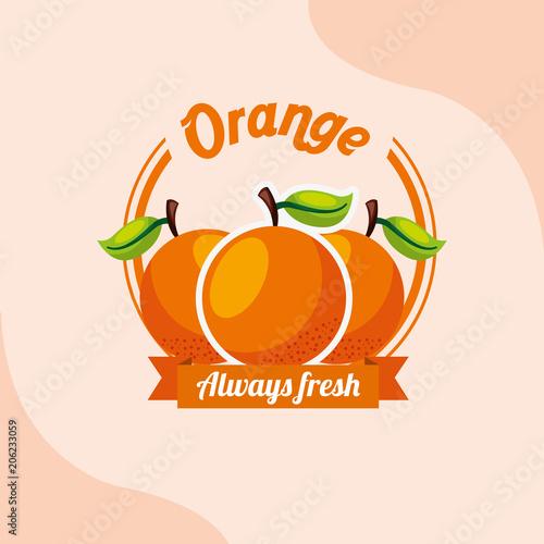 owoc pomarańczowy zawsze świeże godło ilustracji wektorowych