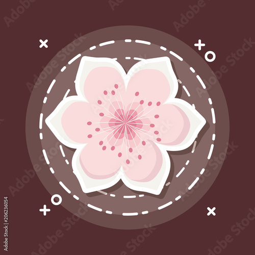Poster blossom flower icon over brown background, colorful design. vector illustration