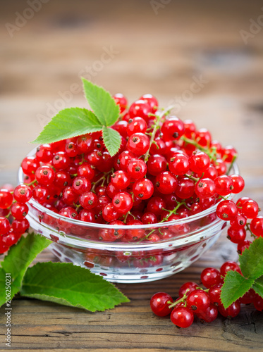 Foto Murales Fresh red currant in the bowl