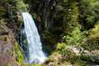 Cascada en un bosque del pirineo catalán - 206254281