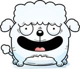 Smiling Little Poodle