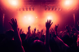 cheering crowd at rock concert in front of bright lights - 206284661