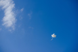 Blue sky, white balon