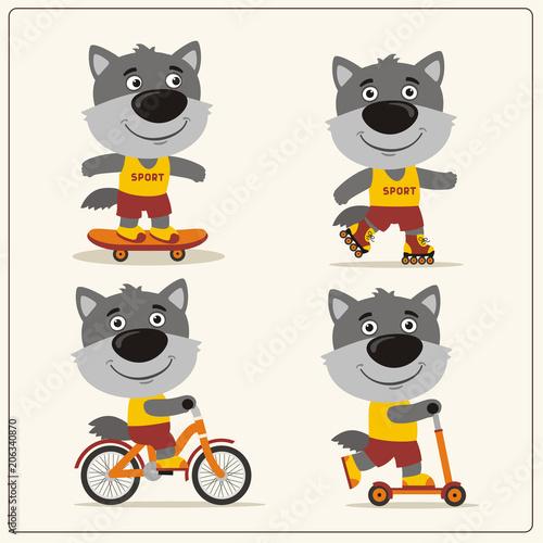 Fototapeta Set of isolated funny wolf on bike, skateboard, scooter and roller skates.