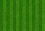 Fußballrasen mit Streifen - 206349207