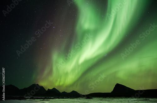 Aurores boréales aux Lofoten, Norvège - 206372897