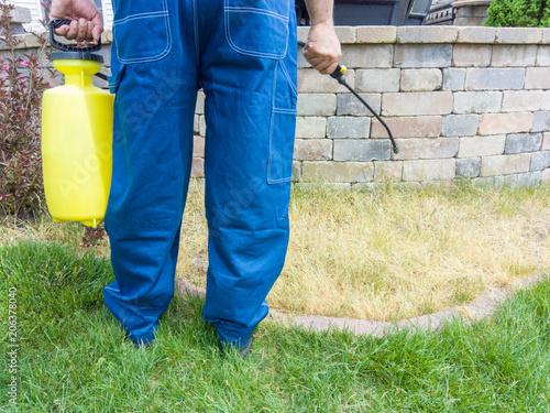 Foto Murales Gardener spraying grass with weed killer