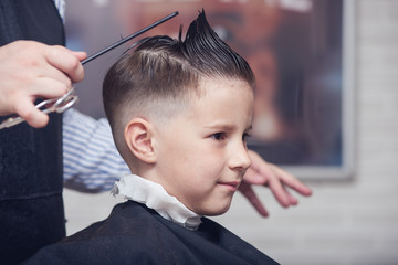 Cheerful Caucasian boy getting hairstyle in barbershop.