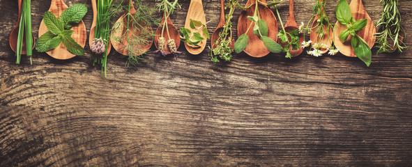 Herbs © powerstock