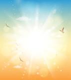 summer sunlight - 206470650