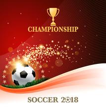 Soccer Winning Sticker