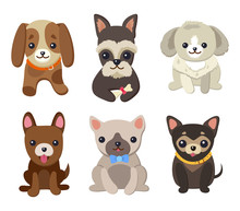 Dogs And Puppies Set Poster  Illustration Sticker