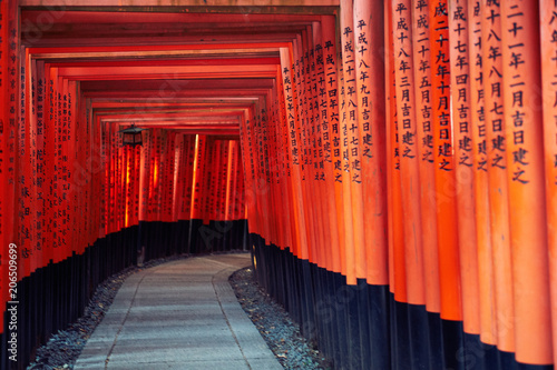 Fotobehang Kyoto Torii Gates of Fushimi Inari-taisha in Kyoto, Japan