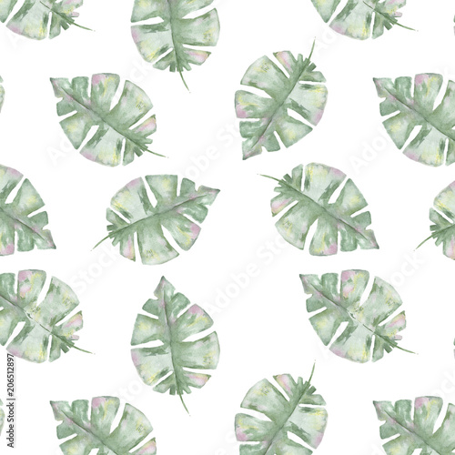 Tropical seamlless pattern with exotic palm leaves. Seamlless pattern tropic leafs on white background - 206512897