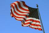 USA Flag - 206528688