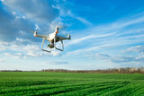 Flying drone above the wheat field - 206529885
