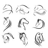 horse  - 206553807