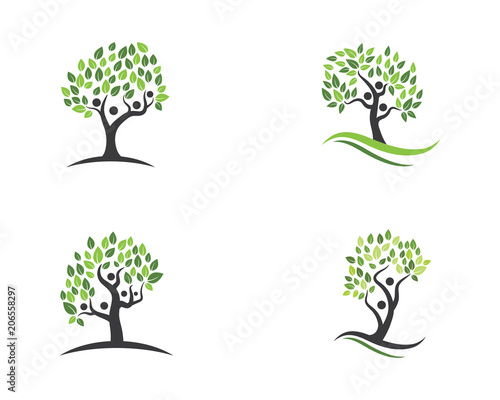 Family Tree Symbol Icon Buy Photos Ap Images Detailview